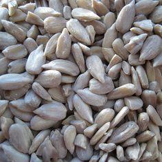 Sunflower Seeds Organic Seeds, Sunflower Seeds, Sprouts, Harvest, Beans, Fresh, Vegetables, Food, Essen
