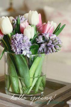 kendrasmiles4u:  Spring on We Heart Ithttp://weheartit.com/entry/107984730/via/kendra_day_crockett