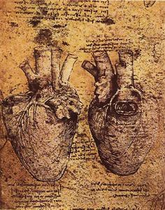 Leonardo DaVinci, notebook drawing of the human heart