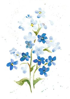 Forget Me Nots Print from Original Watercolor Pale by wrensroost