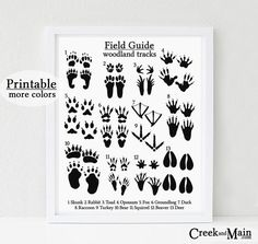 This particular neutral nursery is truly a magnificent style conception. Woodland Decor, Woodland Nursery Decor, Woodland Baby, Duck Nursery, Nursery Art, Animal Bedroom, Kids Bedroom Boys, Animal Tracks, Small Bedroom Designs