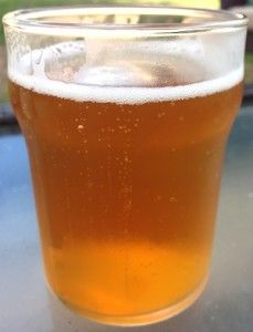 Sour Lime IPA HomeBrew Recipe