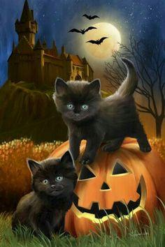 Keep black cats safe on Halloween! - Keep black cats safe on Halloween! Fröhliches Halloween, Halloween Painting, Halloween Pictures, Vintage Halloween, Halloween Drawings, Halloween Quotes, Vintage Witch, Halloween Pumpkins, Halloween Costumes