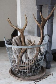 Just put a pair of antlers in a basket. Shabby Chic Stil, Antler Art, Winter House, Home And Deco, Rustic Interiors, My New Room, Antlers, Home And Living, Interior Inspiration