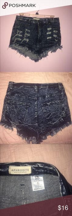 high waisted shorts dark wash, distressed Body Central Shorts Jean Shorts
