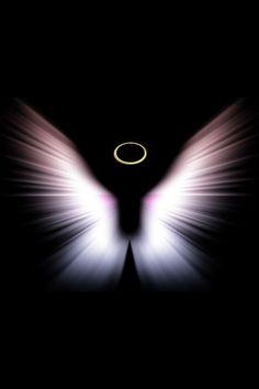 Butterfly's from Heaven