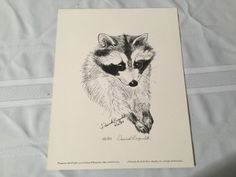 Dominick Brugnolotti Hand Signed Numbered Limited Edition Raccoon Print 1983