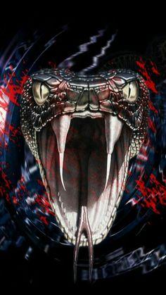 23 Super Ideas For Tattoo Snake Cobra Snake Drawing, Snake Art, Beaux Serpents, Kobra Tattoo, King Cobra Snake, Snake Wallpaper, Scary Snakes, Scary Scary, Beautiful Snakes