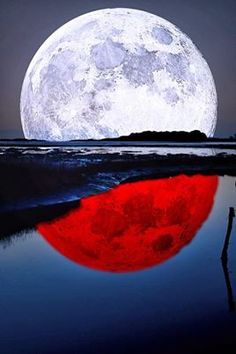 Thanks for visiting Beautiful Mother Nature. Stars Night, Stars And Moon, Moon Photos, Moon Pictures, Moon Pics, Beautiful Moon, Beautiful World, Shoot The Moon, Blue Moon