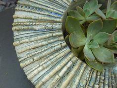 Stoneware planter detail by Gordon Cooke Ceramic Planters, Stoneware, Succulents, Detail, Plants, Ceramic Pots, Succulent Plants, Plant, Ceramica