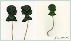 beautiful silhouettes cut from leaves by artist Jenny Lee Fowler
