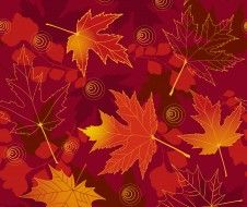векторная графика, природа , nature, maple, autumn, leaves, fall, листья, осенние, фон