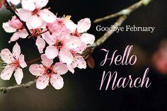 Goodbye February - Hello March!