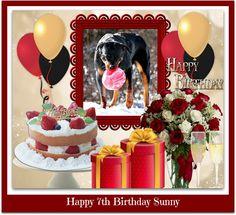 Happy 5th Birthday, Birthday Cake, Rottweilers, Desserts, Tailgate Desserts, Deserts, Birthday Cakes, Rottweiler, Postres