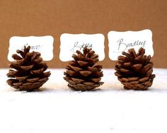 Use pine cones for your escort cards or place names for a Christmas themed wedding. More ideas http://www.toptableplanner.com/blog/table-plans-for-christmas-weddings