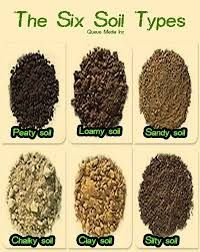 soil - Google Search