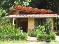 Bamboo for construction and furniture in Costa Rica Costa Rica, Bamboo Poles, Property Listing, Pergola, Construction, Outdoor Structures, Building, Places, Homes