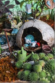 Hedgehogs Fairy Garden with succulents