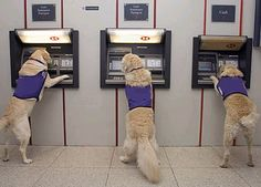 ATM safety tips at www.newportoregon...