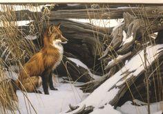 http://robertbateman.ca/paintings/79-14WilyWary.html