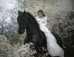 .so beautiful--bride in white on a black stallion