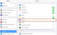 Cómo Ver las Contraseñas Almacenadas en el Llavero de iCloud en iPad
