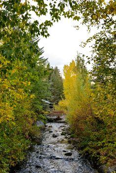 Fall in Sundance Utah  // via Stacie Flinner