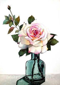 Rose| Mary Gibbs Art