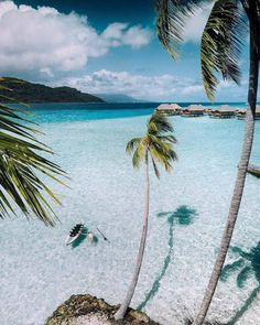 This is a real oasis of calm 🌴🌺❤ Reposted from - The quiet island of Tahaa is the perfect retreat for those seeking peaceful relaxation and crystal-clear waters. Embark on a virtual escape to at link in our bio. Bora Bora, Dream Vacations, Vacation Destinations, Dream Trips, Romantic Vacations, Italy Vacation, Monuments, Tahiti Islands, Dubai