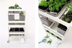 Mobile Food Garden #homegarden #indoorgarden #planting #herbs #spacesaver
