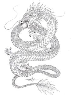 Kind of liking the shape... Water Dragon outline by artstain.deviantart.com on @deviantART