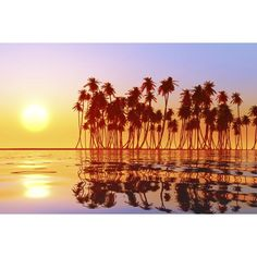 fiyi, islas del pacifico