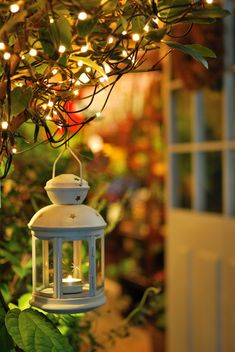 Here are outdoor lighting ideas for your yard to help you create the perfect nighttime entertaining space. outdoor lighting ideas, backyard lighting ideas, frontyard lighting ideas, diy lighting ideas, best for your garden and home Beautiful Flowers Wallpapers, Beautiful Nature Wallpaper, Cute Wallpapers, Decoration Christmas, Ramadan Decorations, Christmas Lights, Lantern Decorations, Ideas Lanterns, Backyard Lighting
