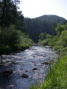 Rapid Creek, Rapid City, SD