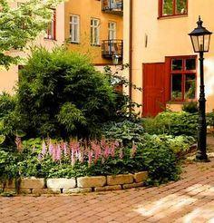 prunkande innergård. I den runda rabatten finns bland annat bambu, funkior, geranium och astilbe. Sidewalk, Deck, Landscape, Garden, Plants, Inspiration, Biblical Inspiration, Scenery, Garten