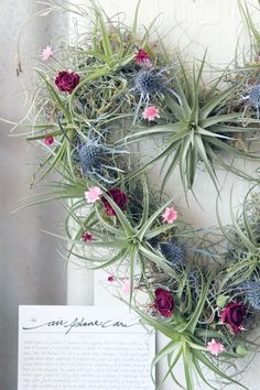 Heart air plant wreath