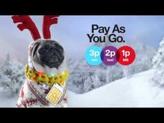 ▶ Three - Pay As You Go at Christmas. Still seriously serious - Pug 321 Advert - YouTube