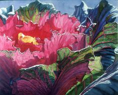 watercolor painting of ornamental cabbage - Revolution in Evolution | Flickr - Photo Sharing!