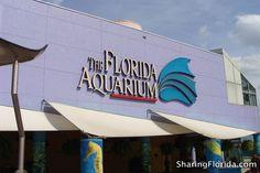 Florida Aquarium in Tampa - Pictures from the Florida Aquarium Channelside Tampa