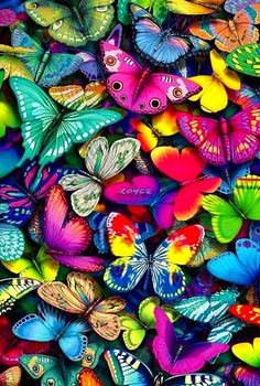 Colorful butterflies are my token of my friendship to Jeanne. She has shown much loving kindness to me through our friendship. My hope these will multiply & fill her with the Holy Spirit delivering HOPE upon her. GOD BLESS YOU JEANNE♡ Butterfly Wallpaper, Butterfly Art, World Of Color, Color Of Life, Art Papillon, Foto Art, Over The Rainbow, Beautiful Butterflies, Belle Photo