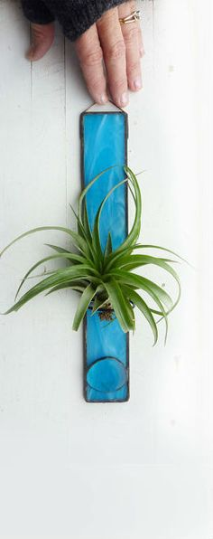 Stained Glass Air Plant Holder - Aqua