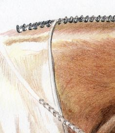 Horse drawing step by step - closup detail of the neck and mane showing the hair texture and mark making.