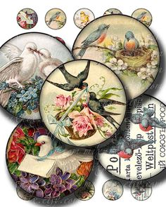 birds  1 inch circles printable download digital collage by 300dpi, $4.25