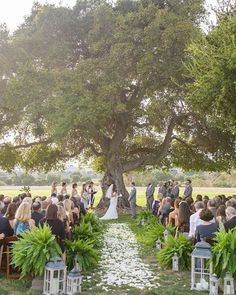 This enormous oak tree at Crossroads is the most beautiful backdrop for a wedding ceremony! We love the way that @cody_floral_design decorated the aisle so simply with petals, ferns, and lanterns!! {photo by: @maryjanephoto}