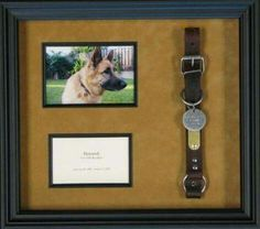 We love dogs at Four Star Framing in Downers Grove, but these types frames are always difficult to do.