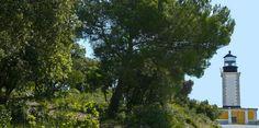 Phare de Camarat - Monument Ramatuelle | Golfe de Saint-Tropez Tourisme