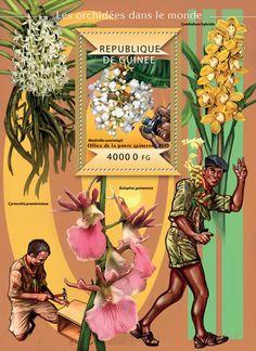 Guinea GU 15116 bOrchids of the World (Medinilla cummingii)