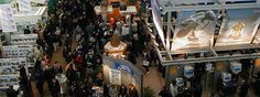 Do Exhibitions Really Mean Business? They Do!
