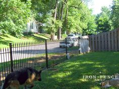 4ft tall wrought iron fence being installed in conjunction with the neighbor's wood fence to keep the dog in but preserve the open view