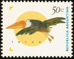 Common Toucan (Ramphastos toco)